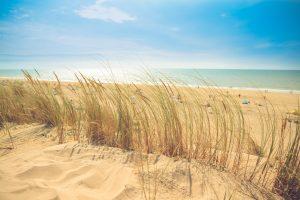 Strandkorb_strand